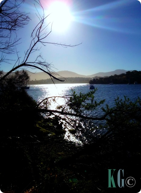 view of the bay photography pictures tasmania australia