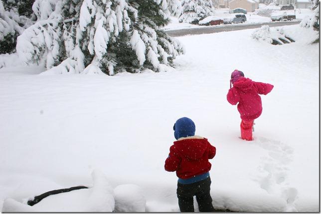 2011-10-26 First Snow (1)