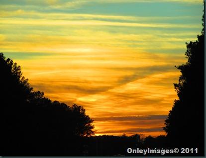 sunset 112711 (8)