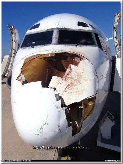 avião acidente (4)
