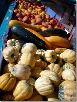 pumpkins 009