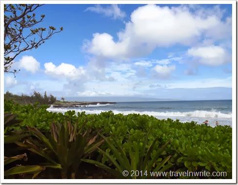 Maui2014BF 037