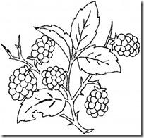 colorear uvas pintaryjugar (6)