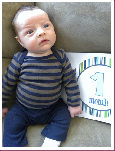 Curtis 1 month
