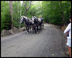 16d - Continuing to Jordan Pond House horse stop