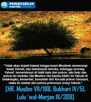 Pohon Gharqad Yahudi