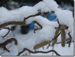 Snowjan2012 039