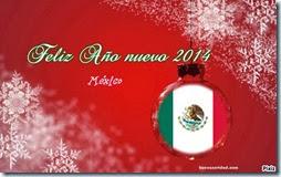 2014 mexico