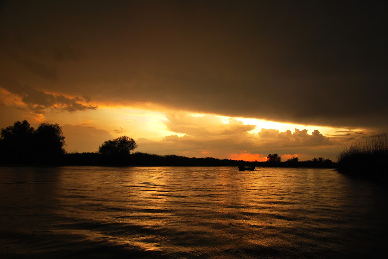 After a summer storm. One could still see lightning in the distance, while the last drops of rain fall near our rowing boat, on the canals of the Danube Delta, Romania.