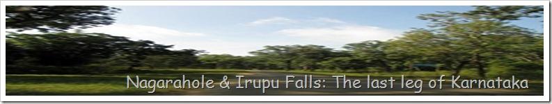Nagarahole & Irupu Falls: The last leg of Karnataka
