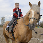 Катання та спілкування з кіньми » Катання та спілкування з кіньми - 21.04.2012