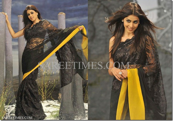 Genelia_Black_Saree