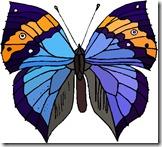 farfalle_15