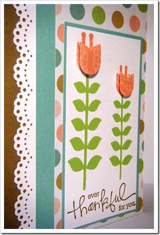 tall tulip thanks 3