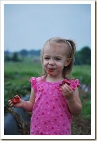 sweet brooklyn with berries