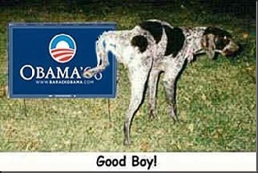 ObamaDog