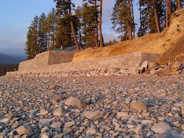 ID Shoreline Protection for Home