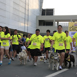 Pet Express Doggie Run 2012 Philippines. Jpg (31).JPG