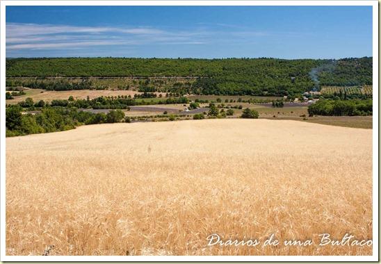 Mont Ventoux-26