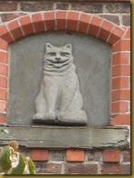 IMG_0209 Cheshire Cat