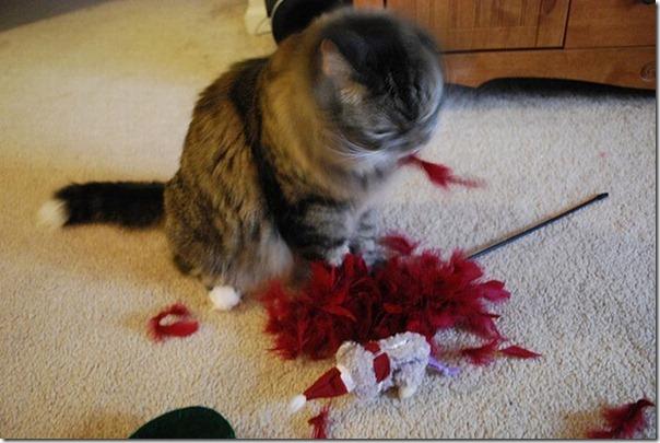 Gatos odeiam o natal (11)