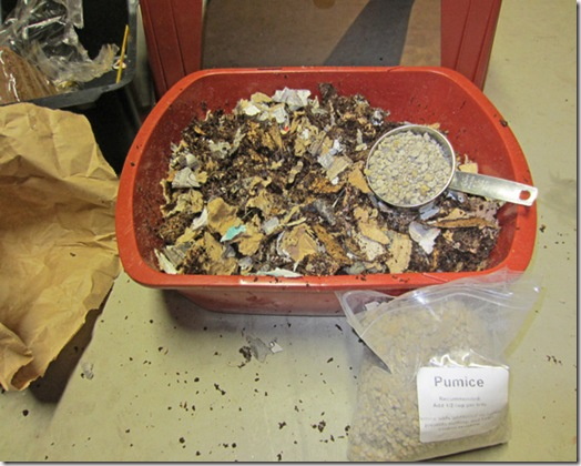 Adding shredded paper and pumice to bedding