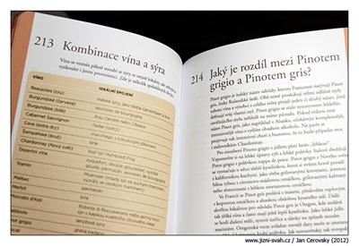 kombinace_vina_syr