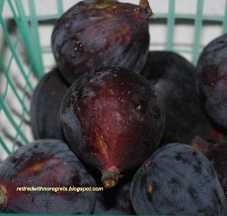 Figs  B