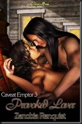 Caveat Emptor 3 Provoked Lover