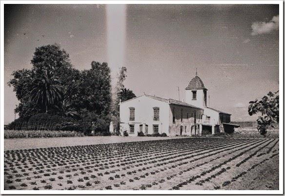 1978 Alquería del Magistre, actual Museo de l'Orxata (Alboraia)