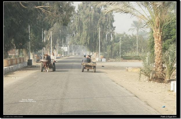 Egypt Day 11_03-6