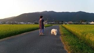 20140914-006.jpg