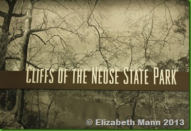 Cliffs of The Neuse State Park