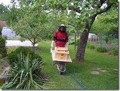 včelky a med květen 085