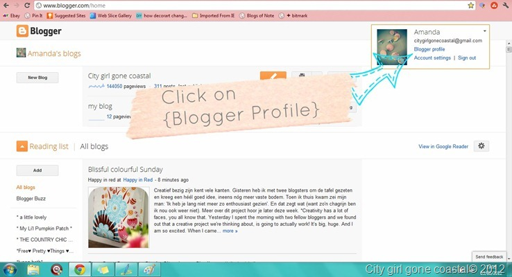 blogger profile window