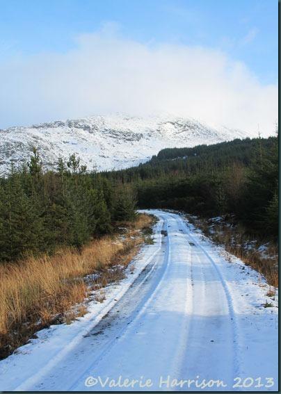 7-snowy-track