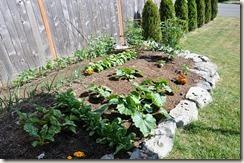 gardenblog13