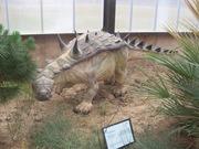 2008.09.05-012 Struthiosaurus
