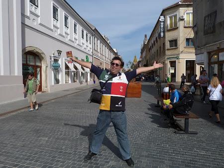 Strada pietonala din Oradea