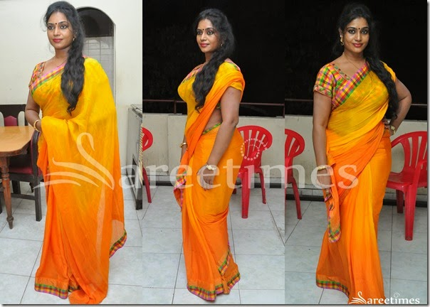 Jayavani_Dual_Color_Saree