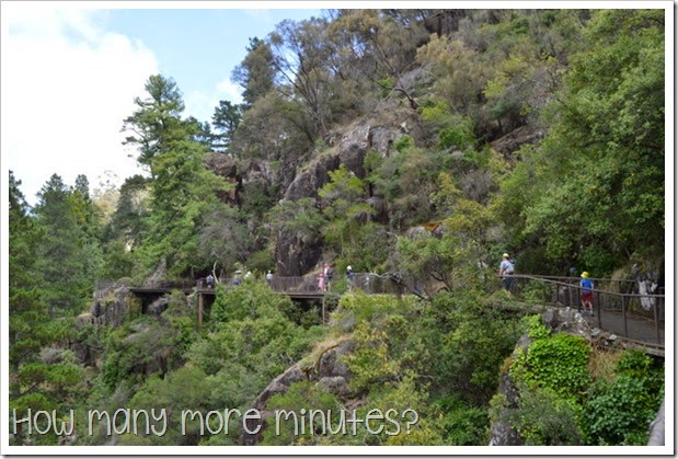 How Many More Minutes? ~ Longord, TAS: Cataract Gorge Reserve