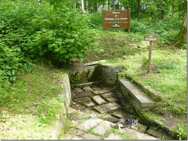 Source de Fontaine á la Goutte near Saint-Nicolas-aux-Bois