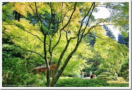 140712_PortlandJapaneseGarden_004