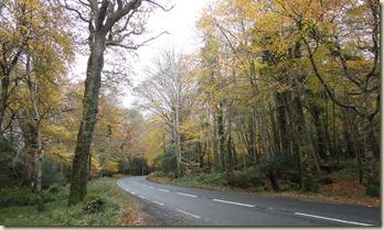 01.Carretera irlandesa - Killarney