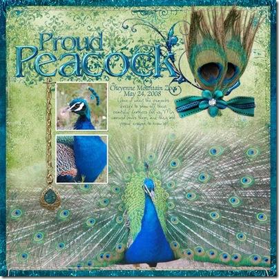 CMZoo-Peacock_5-24-08