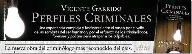 5197_1_Banner_Perfiles_Criminales_OK
