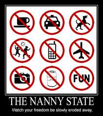 Nanny State.jpeg