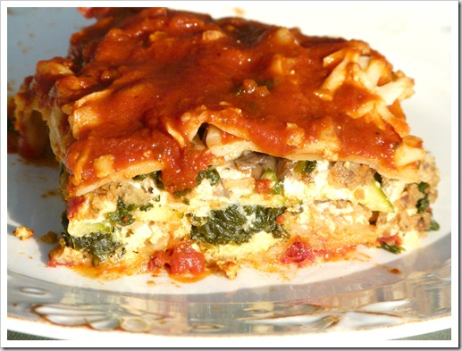 side view lasagna