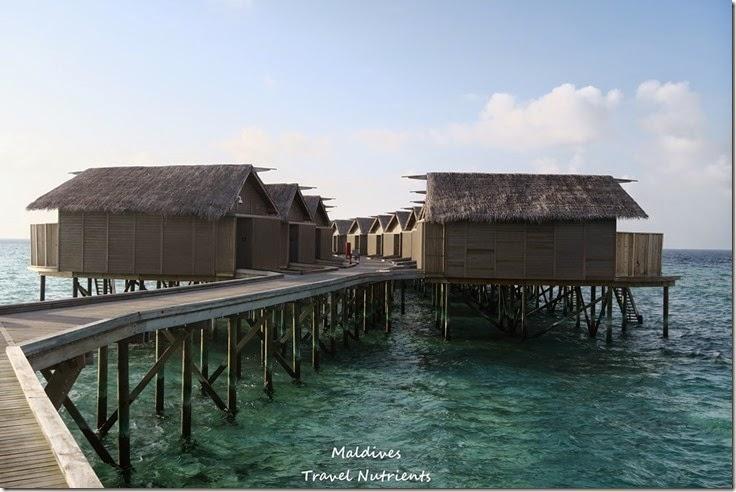 馬爾地夫 Centara渡假村 (20)