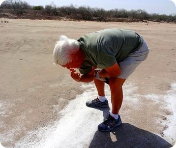 Paul tasting salt